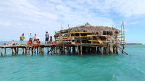 Pelican Bar and YS Falls, Negril, Day Trips