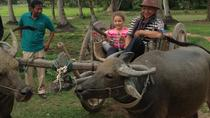A Day in Rural Cambodia from Siem Reap, Siem Reap, Day Trips