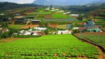 Full-Day Dalat Countryside Tour, Central Vietnam, Day Trips