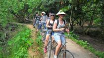 Mekong Rural Life 3-Day Tour with Homestay, Mekong Delta, Multi-day Tours