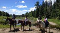 Horseback Trail Ride and Lesson , Ontario, Horseback Riding