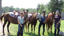Horseback Trail Ride and Lesson, Ottawa, Bike & Mountain Bike Tours
