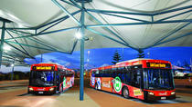 Gold Coast Transport Pass Including Return Airport Transfer, Gold Coast, Bus Services