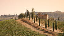 Chianti Half-Day Trip with Traditional Tuscan Dinner and Wine Pairings from Florence, Florence, ...