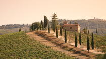 Chianti Half-Day Trip with Traditional Tuscan Dinner and Wine Pairing from Florence, Florence, Wine ...