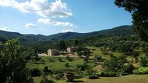 Chianti Half-Day Wine Tour from Florence, Florence, 4WD, ATV & Off-Road Tours