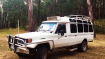 Private Tour: Wombat State Forest Wildlife Safari 4WD Tour from Melbourne, Melbourne, Day Trips