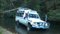 Wombat State Forest Wildlife Safari 4WD Tour from Woodend or Melbourne, Melbourne, Day Trips