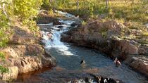 3-Day Kakadu and Litchfield Green Season Tour from Darwin, Darwin, Multi-day Tours