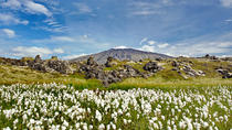 Snæfellsnes Peninsula Day Trip from Reykjavik: Kirkjufell Mountain and...