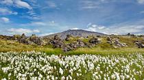 Snaefellsjokul Peninsula Day Trip from Reykjavik: Kirkjufell Mountain and Djúpalónssandur...