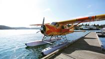 Seaplane Tour from Friday Harbor, San Juan Islands, Air Tours