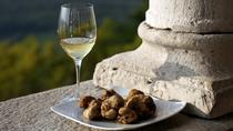 Flavours of Istria Tasting Experience from Portoroz, Piran, Cultural Tours