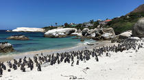 Full-Day Cape Point and Wine Tasting Tour from Cape Town, Cape Town, Day Trips