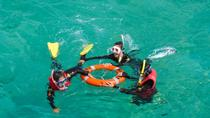 Green Island Day Trip from Cairns Including Snorkel Tour Experience, Cairns & the Tropical ...