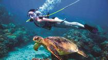 Green Island Day Trip from Cairns Including SNUBA or SNUBA Doo Experience, Cairns & the ...