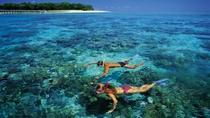 Tagesausflug zum Green Island ab Cairns, Cairns & the Tropical North, Day Cruises