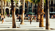 Highlights and Hidden Gems Private Tour Barcelona, Barcelona, Bike & Mountain Bike Tours