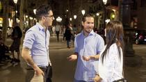 Private Barcelona Night Tour, Barcelona, Night Tours
