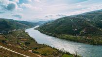 Private Day Trip Through Douro Valley, Porto, Private Day Trips