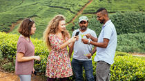 Private Nuwara Eliya Experience: Tea, Locals & Nature, Kandy, Private Sightseeing Tours