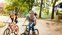 Private Tour: Half-Day Bangkok Bike Tour With a Local, Bangkok, Private Sightseeing Tours