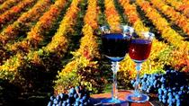 4-Day Wine Tour in Moldova from Chisinau, Chisinau, Multi-day Tours