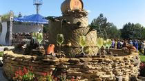 Milestii Mici Winery Tour from Chisinau, Chisinau