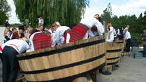 Wine Battle in Purcari Winery from Chisinau, Chisinau, Wine Tasting & Winery Tours
