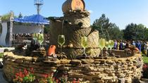 Wine tour to Milestii Mici Winery from Chisinau, Chisinau, Wine Tasting & Winery Tours