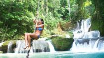 Full-day Tour to Appleton Estate and YS Falls from Montego Bay, Montego Bay, Private Sightseeing ...