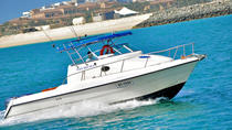 Private Tour: Dubai Sightseeing Speedboat Cruise, Dubai, Day Cruises