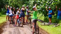 Easy Rarotonga Cycling Tour with Lunch, Rarotonga, Bike & Mountain Bike Tours
