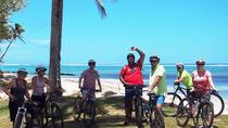 Intermediate Rarotonga Cycling Tour with Lunch or Cocktails, Rarotonga, Bike & Mountain Bike Tours