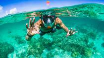Aria Snorkel Mask Rental, Kauai, Snorkeling