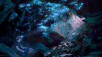 Glowworm Caving Adventure Tour in Waitomo, Waitomo, Eco Tours