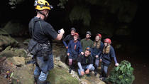 Private Glowworm Cave Tours, Waitomo, Private Sightseeing Tours