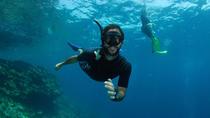 Snorkeling Day Tour at Koh Bida with Professional Guide in Ko Lanta, Ko Lanta, Snorkeling