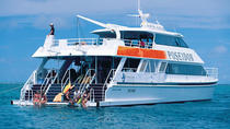 Poseidon Outer Great Barrier Reef Snorkeling and Diving Cruise from Port Douglas, Port Douglas, Day ...