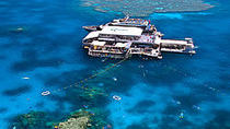 Ultimativer 3-Tages-Pass für die Bootstour zum Great Barrier Reef, Cairns & Tropical North