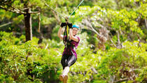 Gold Coast Canyon Flyer Zipline Tour, Gold Coast, Ziplines