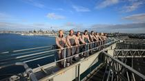 Auckland Harbour Bridge Climb, Auckland, Ports of Call Tours