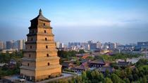 2-Day Xi'an Private Tour Combo Package, Xian, Multi-day Tours