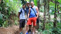 Full-Day Trekking and Sightseeing Tour from Ubud , Ubud, Hiking & Camping