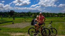 Ubud cycling tour, Ubud, Bike & Mountain Bike Tours