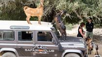 Full-Day Land Rover Safari from Athens with Lunch, Athens, Day Trips