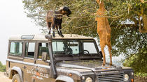 Full-Day Land Rover Safari from Heraklion with Lunch, Heraklion, Cultural Tours