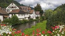 Black Forest and Rhine Falls Day Trip from Zurich, Zurich, Private Sightseeing Tours