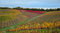 Full-Day Private Tour Taste of Chianti from Siena, Siena, Full-day Tours