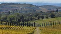 Half-Day Private Chianti Wine Tasting Tour from Siena, Siena, Wine Tasting & Winery Tours